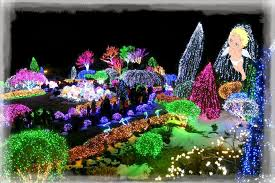 with the blood of a wanderer winter wonderland the garden of