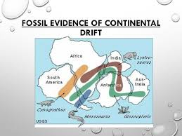 sea floor spreading continental drift ppt video download