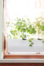 Kitchen Window Sill Decorating Ideas by 15 Indoor Herb Garden Ideas Kitchen Herb Planters