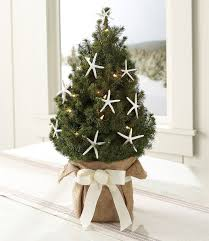 homey inspiration small tree lights with live led lighted