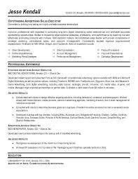 account executive resume sales vp resume sales sales lewesmr