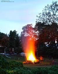 halloween bonfires and bats phillip u0027s natural world
