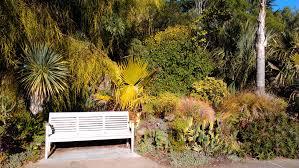 Golden Gate Botanical Garden San Francisco Botanical Garden White