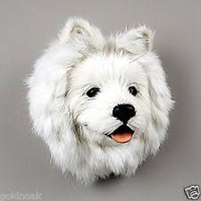 american eskimo dog black american eskimo dog collectibles ebay