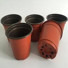 d10xh9cm 100pcs lot cheap plastic pots caliber corrosion