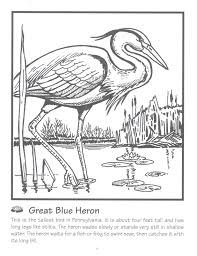 blue heron coloring page urban threads and blue he eceap ideas