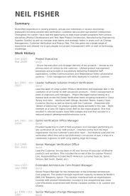 project executive resume samples visualcv resume samples database