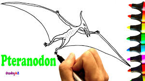 how to draw pteranodon and pteranodon dinosaur coloring pages for