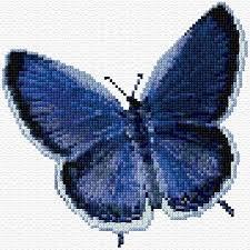 29 best cross stitch butterflys images on butterflies