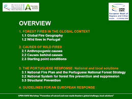 Challenge Causes Forest Fires Global Challenge Local Solutions Ppt