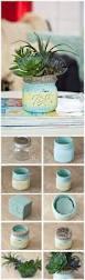 best 25 mason jar succulents ideas on pinterest mason jar
