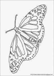 nature coloring pages educational fun kids coloring pages