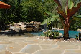 Lagoon Style Pool Designs by Pool Design And Construction 1 Bergen County Nj Pool