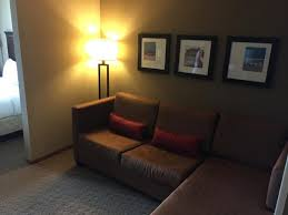 Pull Out Sofa Bed Pull Out Sofa Bed Picture Of Comfort Suites Sarasota Sarasota