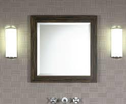Xylem Bathroom Vanity 24 U201d Xylem V Essence 24se Bathroom Vanity Bathroom Vanities