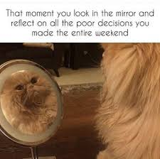Mirror Meme - that moment you look in the mirror and reflect on all the poor