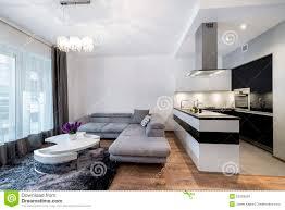 cuisine et salon cuisine et salon dans la maison de luxe image stock image 52069509