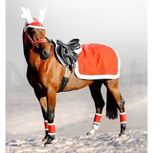 country u0026 equestrian christmas gift ideas for horses 2014 naylors