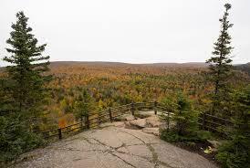 4 minn fall foliage hunting tips dnr u0027s leaf color