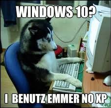 German Memes - the 6 best places to find german memes online fluentu german