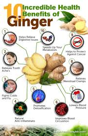 best 25 ginger health benefits ideas on pinterest ginger