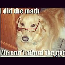 Dog Jokes Meme - dog math funny