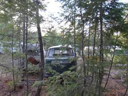 vw schwimmwagen found in forest bbt nv blog cars for sale