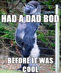 Mean Dad Meme - 92 top amazing dad memes