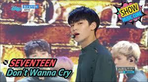 seventeen don u0027t wanna cry 세븐틴 울고 싶지 않아 show
