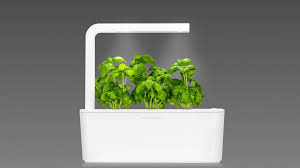 basil timelapse click u0026 grow smart herb garden youtube