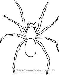 spider clipart clipart black white pencil color