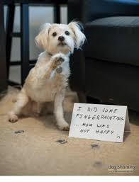 Happy Dog Meme - i did me finger painting mom was not happy dog shaming meme on