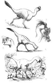 50 best how not to paleoart images on pinterest prehistoric