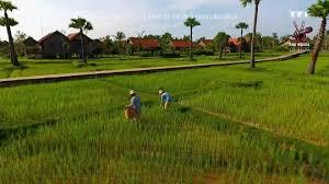 tf1 si e 50 inside direction le cambodge pays de cœur d tf1
