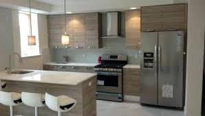 Modern Kitchen Cabinets Nyc Kitchen Cabinets In Nyc Aster Modern Kitchens Images 0 On