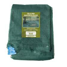 cassette per raccolta olive rete olive 6x6 con spacco olio polsinelli enologia