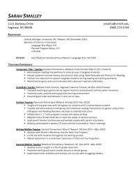 Two Page Resume One Page Cv Examples Free Resume Templates Good One Page Cv Exa