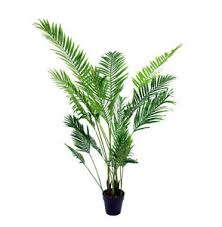 artificial 6ft 160cm paradise palm tree indoor use office plant