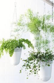 Ikea Plant Ideas by 164 Best Ikea Molndal U0026 Skurar Images On Pinterest Decoration