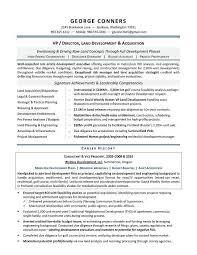 sample ceo resume example executive or ceo careerperfectcom ceo