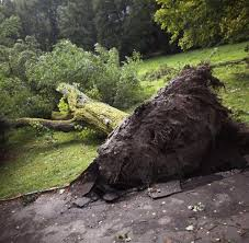 Polizei Bad Schwalbach Wetterphänomen Tornado Verdacht Nach Heftigem Unwetter In