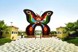 discover dxb dubai u0027s butterfly garden dubaiweek ae