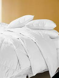 Best Goose Down Duvet Eddie Bauer Superior Goose Down Comforter Review