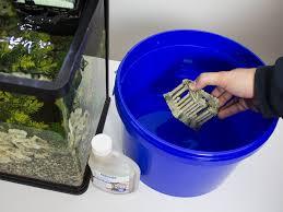 how to clean aquarium ornaments pond aquarium problem solver