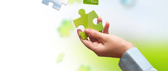 company activities suga international holdings limited