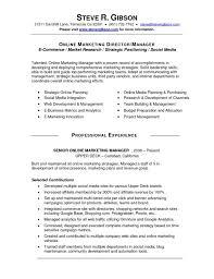 social media resume social media manager resume capable likeness sle 17 ideastocker