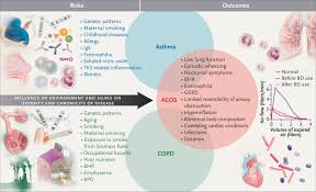 716 best environmental graphics images the asthma u2013copd overlap syndrome nejm