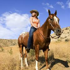 Texas how far can a horse travel in a day images Horse riding in san antonio usa today jpg