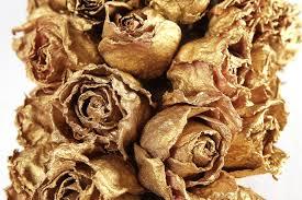 golden roses golden roses by ilyaafanasyev on deviantart