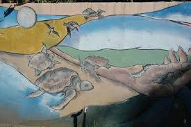 Murial by Turtle Volunteer In Costa Rica Costa Rica Turtle Conservation